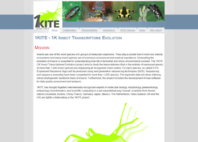 1kite.org
