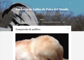 1peleagallos.blogspot.mx