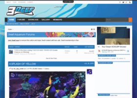 3reef.com