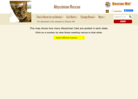 abyssinian.rescueme.org