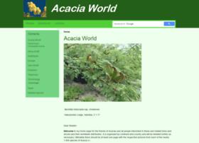 acacia-world.net