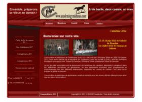academiegymkhanas.com