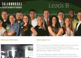 accessleads-b.com