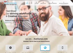 acegurus.com