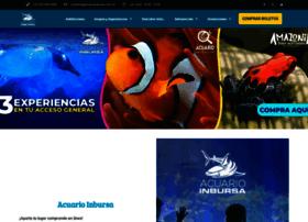 acuarioinbursa.com.mx
