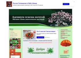 aden.okis.ru