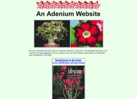 adenium.tucsoncactus.org