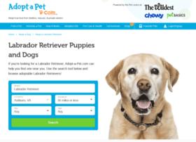 adopt-a-labrador-retriever.adoptapet.com