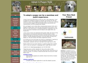 adopt-a-puppy-now.com