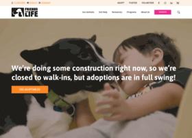 adoptfriends4life.org