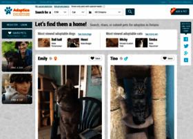adoptico.com