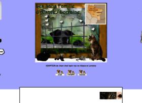 adoptionsallorraine.forumgratuit.org