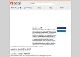 adsense.nedir.com