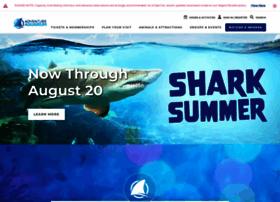adventureaquarium.com