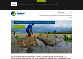 africa.wetlands.org