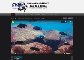 africancichlidhub.com