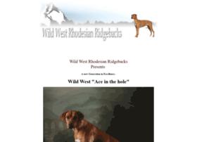 africanlionhounds.com