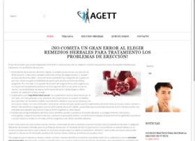 agett.com