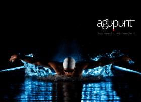 agu-punt.com