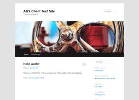 agytestsite.com