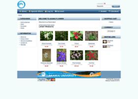 akamaiflowershop.com