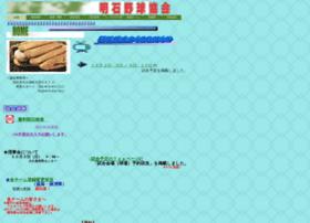 akashi-baseball.jp