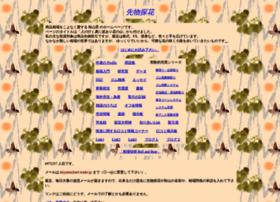 akiyama.net-trader.jp