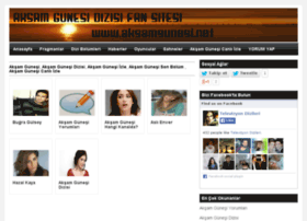 aksamgunesi.net
