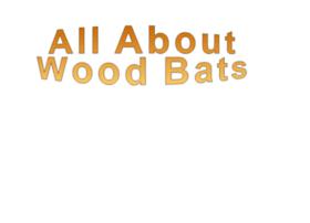 all-about-wood-bats.com
