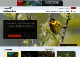 Allaboutbirds.org