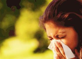 allergy.allergystore.com
