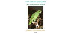 amazone-papegaai.nl