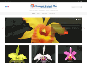amazoniaorchidsinc.com