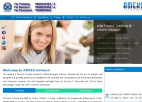 ameksinfotech.com