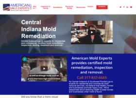 americanmoldexperts.com