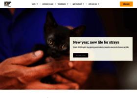 amtmindia.org