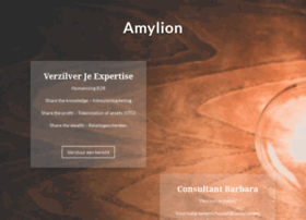 amylion-internetmarketing.com