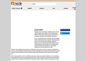 anemi.nedir.com