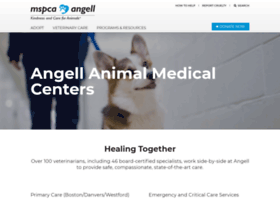 angell.org