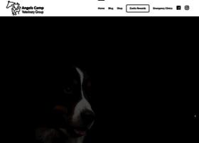 angelscampvet.com