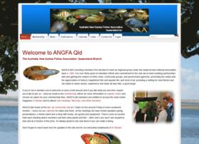 angfaqld.org.au