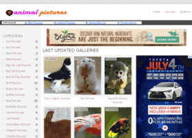 animal-pictures.com