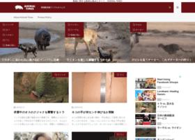 animal-times.com