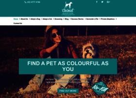animaladoption.com.au