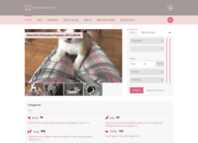 animalmarket24.com