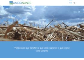 anisionunes.com