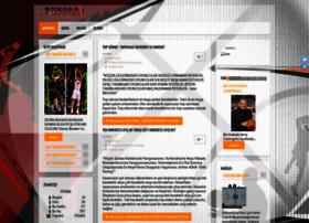 ankarabasketbol.com