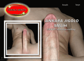 ankarajigolo.net