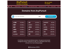 anypursuit.com