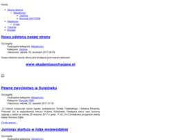apsochaczew.pl